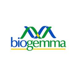 Logo biogeamma