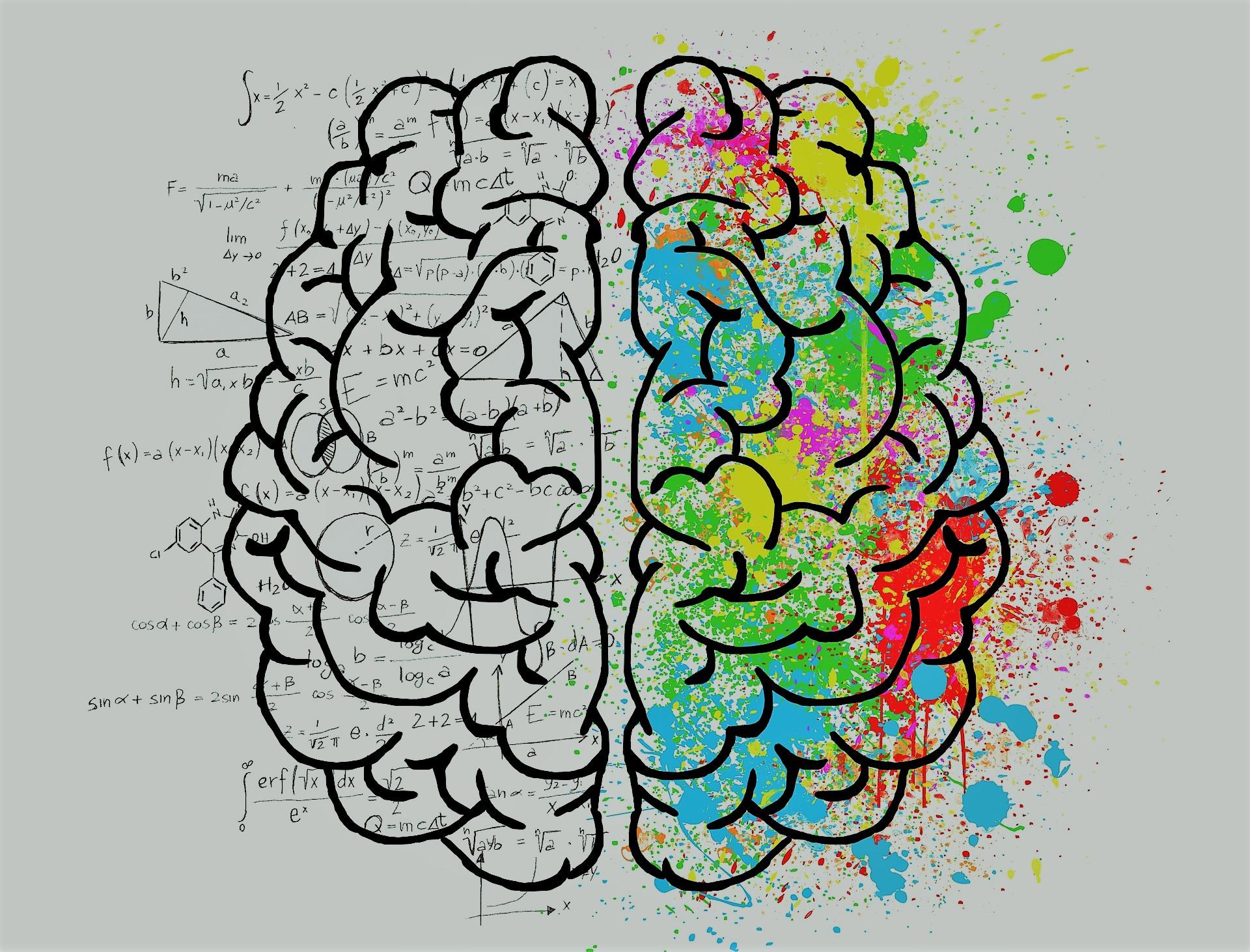 Formules mathématiques et physiques sur tableau blanc avec dessin d'un cerveau coloré