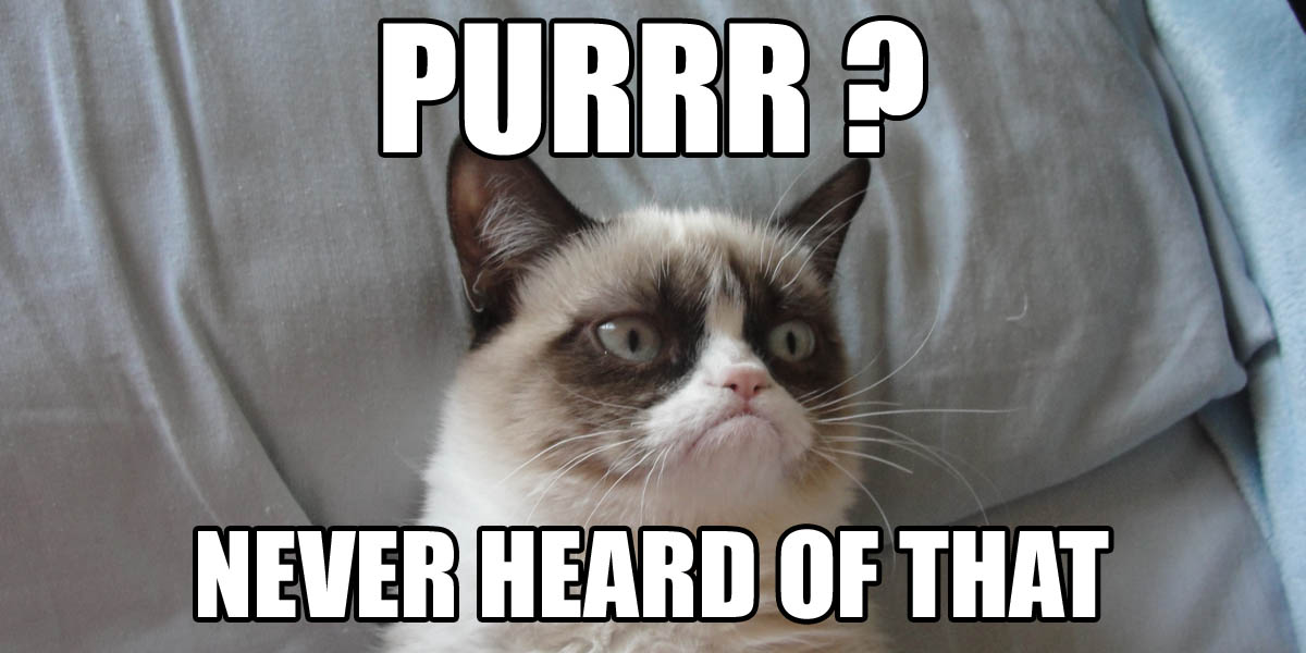 purr ? never heard of that (mème)